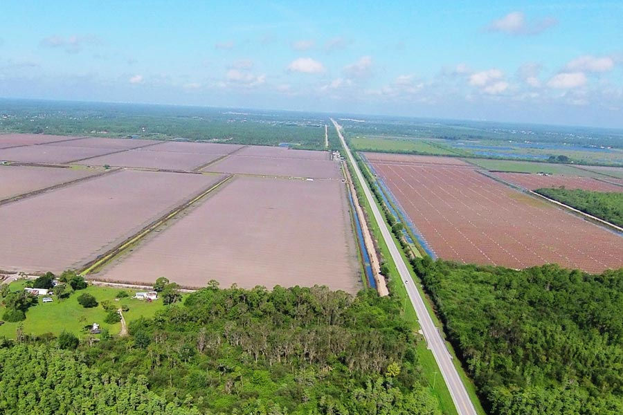Eastern Collier County Development Communities Big Cypress